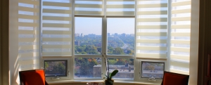 Baywindow blinds