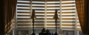 Toronto Custome Blinds